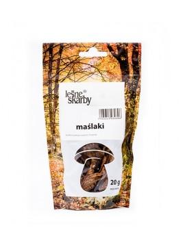 Leśne Skarby - Maślak Zwyczajny