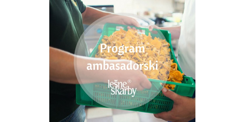 WE ARE LOOKING FOR AMBASSADORS – JOIN US!